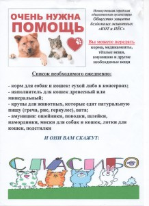 кот и пес 001